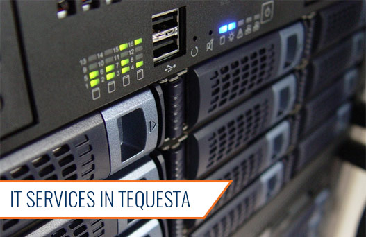 IT Services in Tequesta